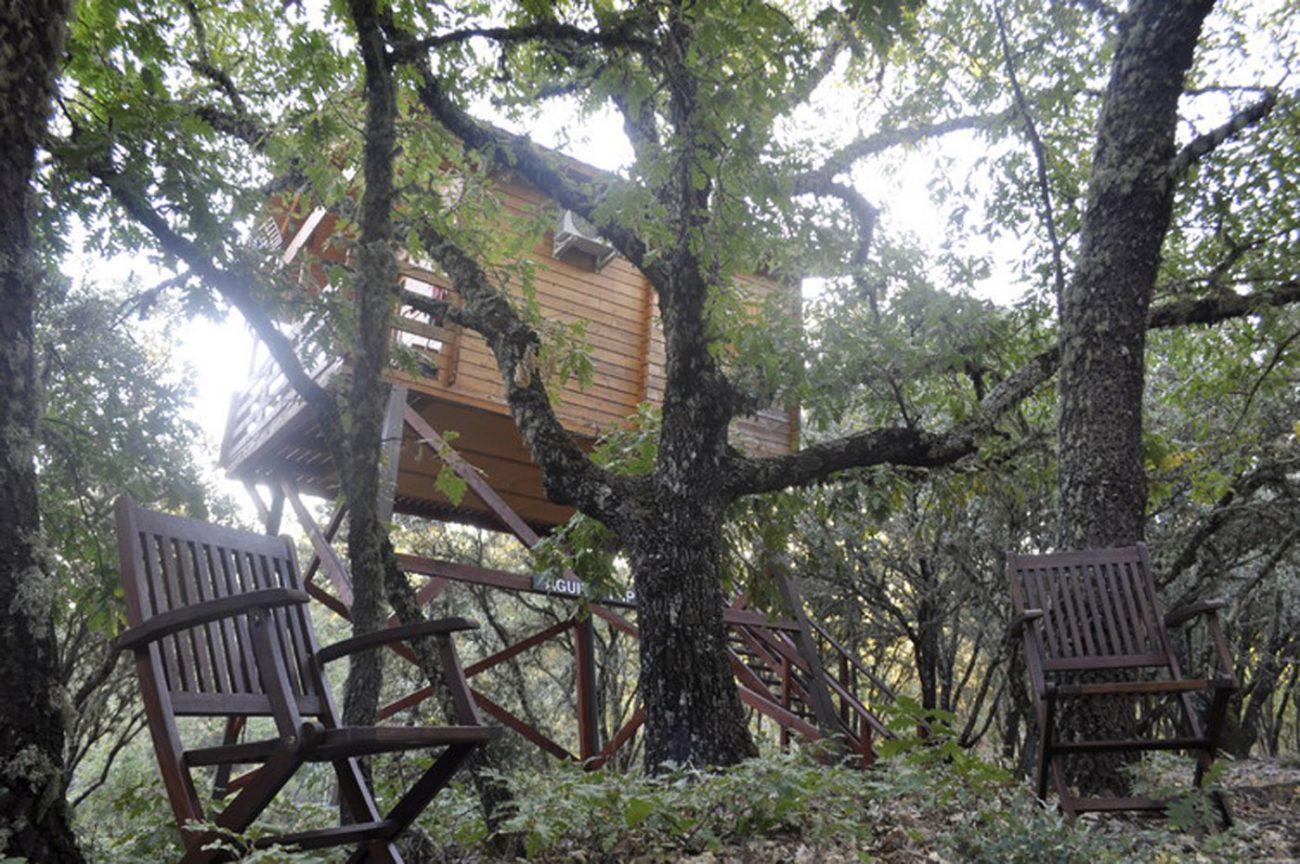 Dormir Sobre Los Arboles - Cabaas-de-madera-en-arboles