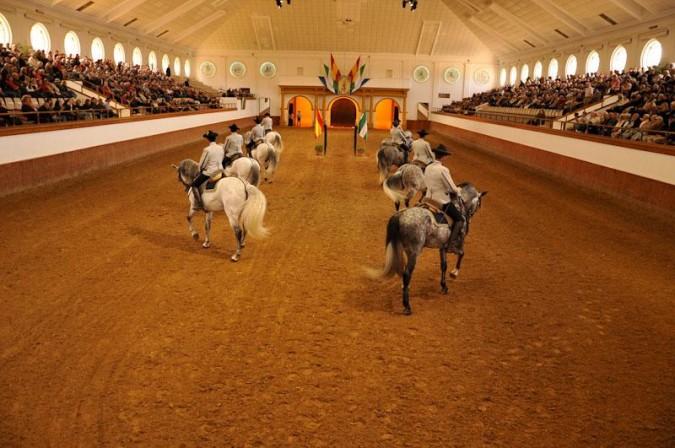 Exhibición de caballos cartujanos. Imagen de la Real Escuela Andaluza del Arte Ecuestre