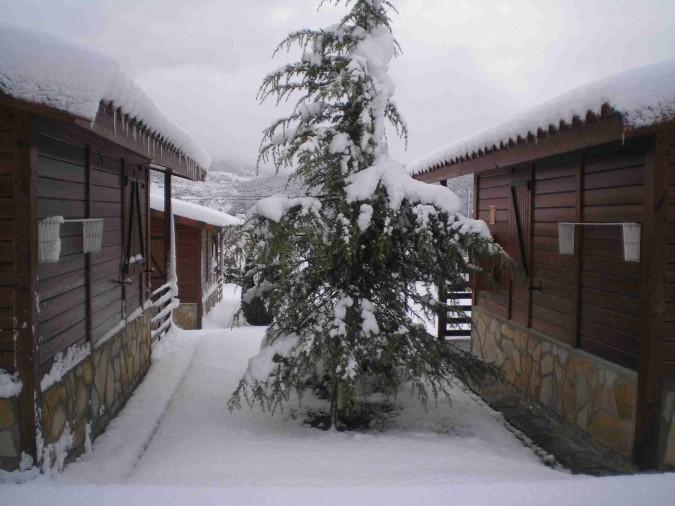 ¡Disfruta de la nieve en un completo bungalow!