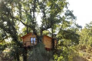 ¿Y si disfrutas de Cáceres desde las alturas? Imagen de Cabañas en los Árboles de Extremadura