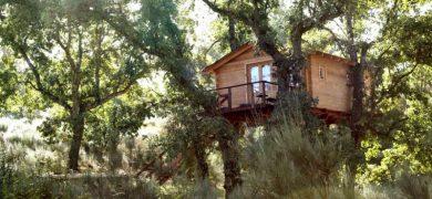 Cabañas en los árboles de Extremadura