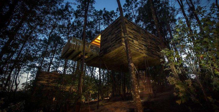 Tres caba as ideales para dormir en los rboles - Alojamientos en el bosque ...