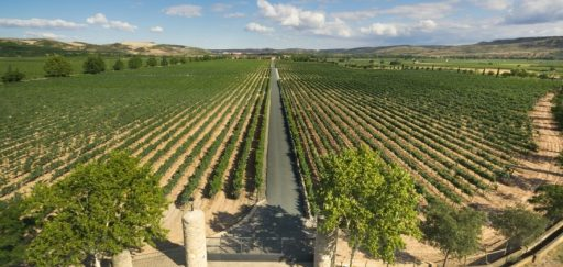 Discover the most beautiful landscapes of La Rioja with BungalowsClub