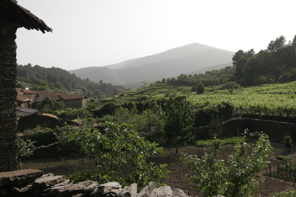 Tenemos la casa rural perfecta en c ceres para este verano - Banos del robledillo ...