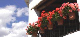 balcon macetas casa alpujarra granada andalucia