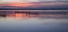 albufera-valencia-naturaleza-costa-playa-sol